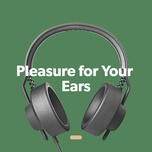 pleasure for your ears - v.a