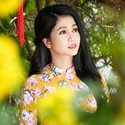 Tải bài hát Cánh Hoa Yêu Mp3