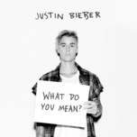 Tải bài hát What Do You Mean? Mp3