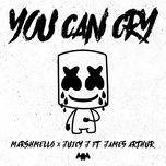Tải bài hát You Can Cry Mp3