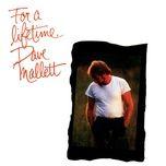Tải bài hát For A Lifetime Mp3