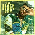 Blackberry Sky