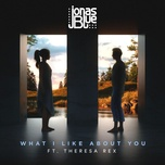 what i like about you - jonas blue, theresa rex