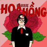 hoa hong - harrie
