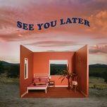 Tải bài hát See You Later Mp3
