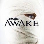 Tải bài hát Awake And Alive Mp3