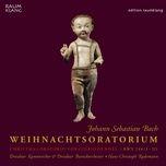 Weihnachtsoratorium Iii, Bwv 248: No. 29, Duett (Sopran Und Bass): Herr, Dein Mitleid, Dein Erbarmen