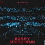 Sorry (StiggiZ Remix)