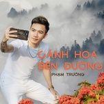 Tải bài hát Cánh Hoa Bên Đường Mp3